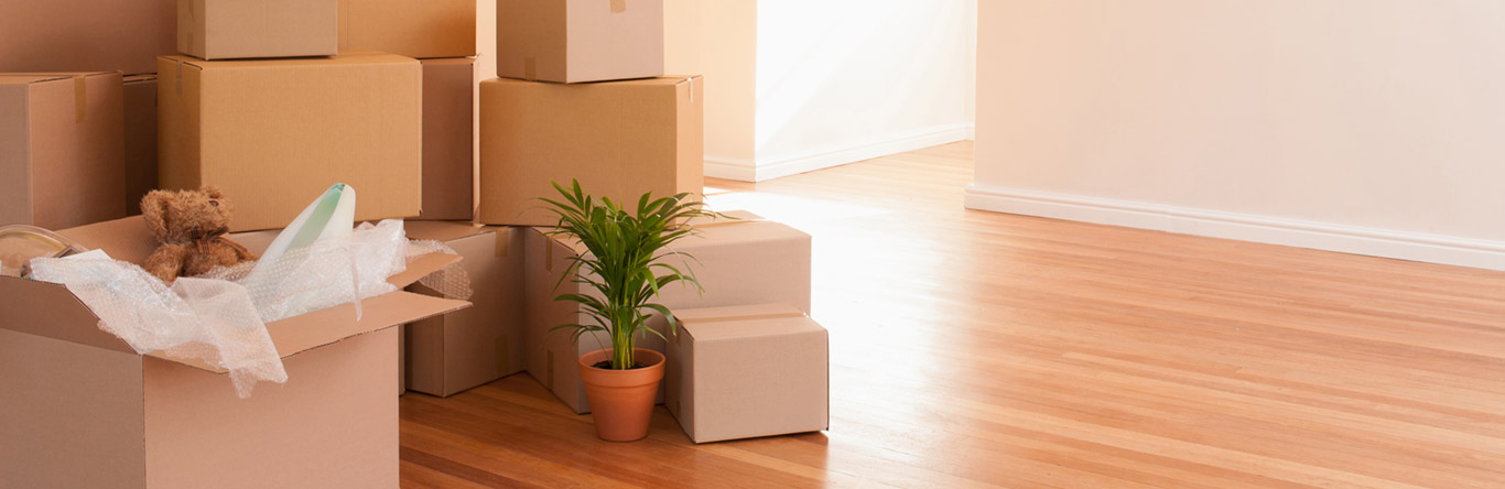 boxes in empty home
